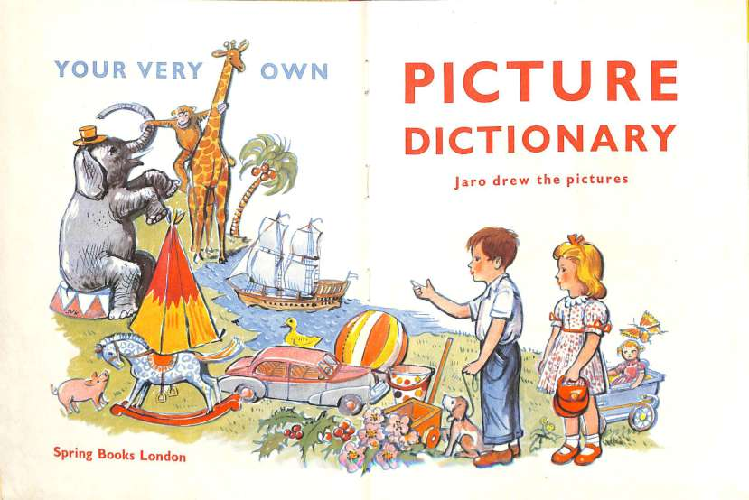 Your very own picture dictionary