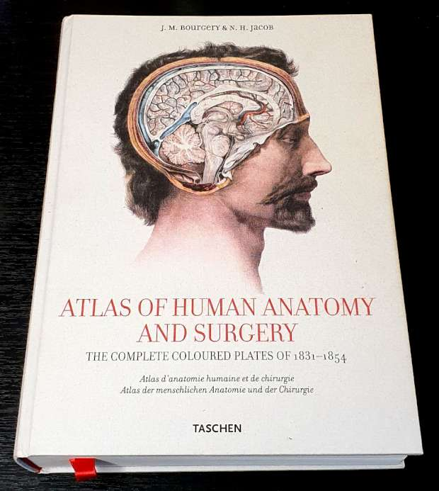 Atlas of Human Anatomy and Surgery - The Complete Coloured Plates of 1831-1854